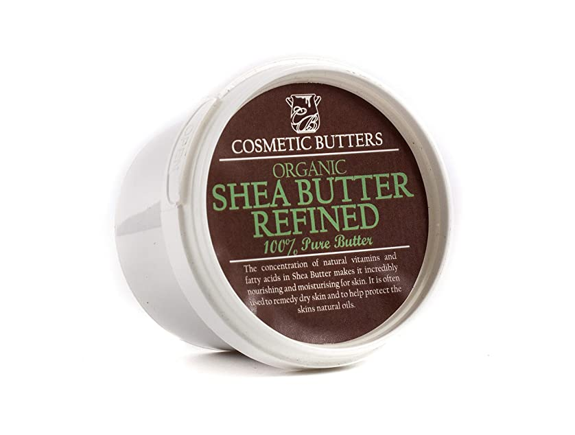 絶滅させる刺す習慣Shea Butter Refined Organic - 100% Pure and Natural - 100g
