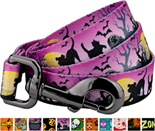 Country Brook Design - Dog Leash - Halloween Collection with 11 Spooky Designs