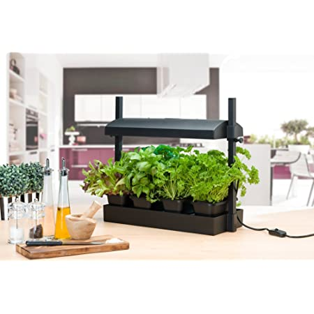 "SunBlaster SL1600218 Micro LED Grow Light Garden, 21.75"" x 7.75"", Black"