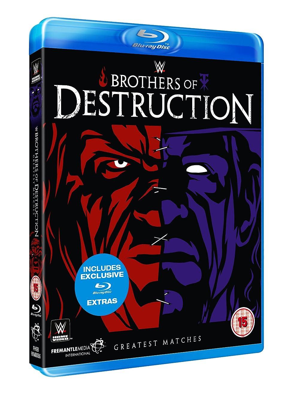 運命与える逃すWWE: Brothers Of Destruction