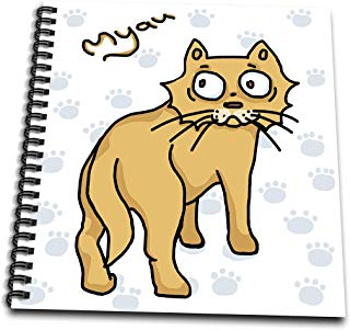 3dRose Warya - Animals. - Ginger Cat Say Meou - Drawing Book 8 x 8 inch (db_299938_1)