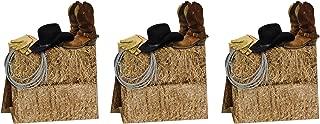 cowboy hat birthday cake ideas