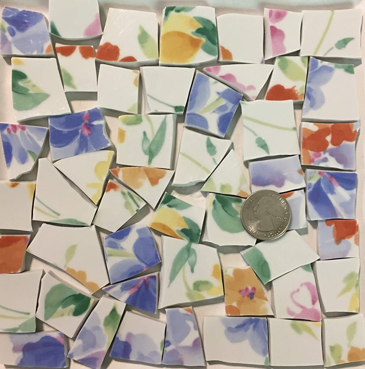 Mosaic Art & Crafts Supply ~ Pale Blue & Green Floral Rim Tiles (B935)