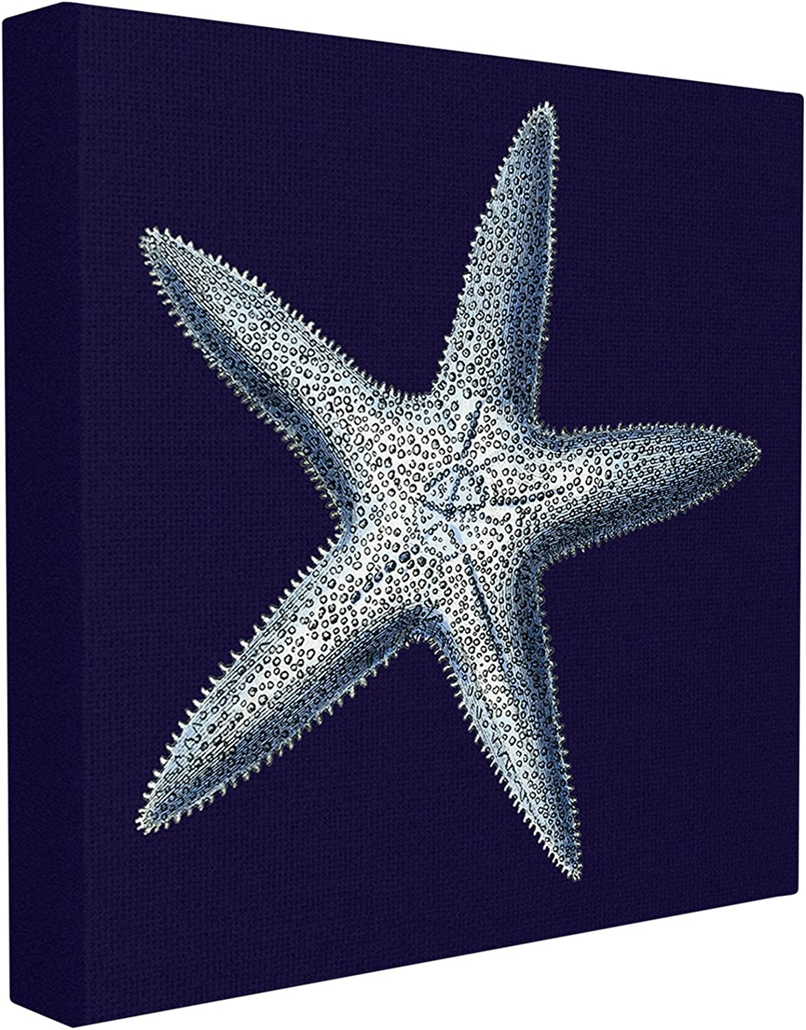 Stupell Home Décor Distressed Navy and White Starfish Stretched Canvas Wall Art, 17 x 1.5 x 17, Proudly Made in USA