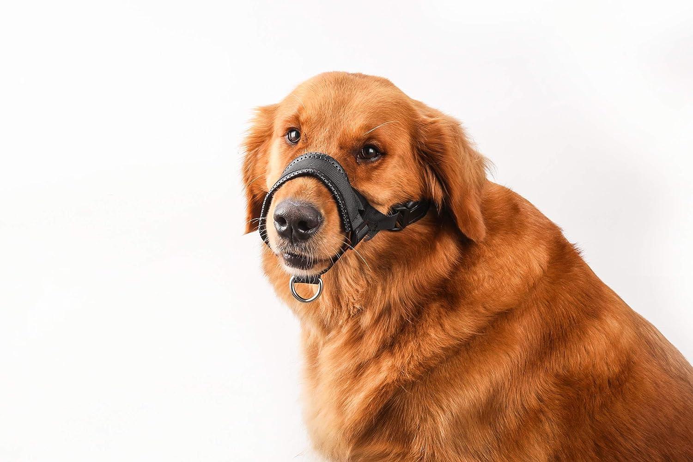 Quick Fit Nylon Dog Muzzle, Adjustable Loop, Black(L&XL)Brand BOBO