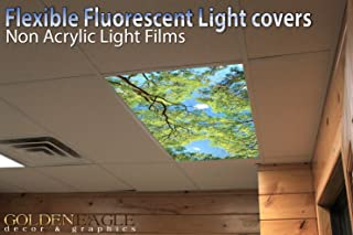 Best fluorescent ceiling lamp Reviews