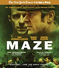 MAZE, a New York Times Critic's Pick coming to Blu-ray and DVD on June 25th from MVD Entertaimment