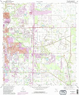 YellowMaps Bee Ridge FL topo map, 1:24000 Scale, 7.5 X 7.5 Minute, Historical, 1973, Updated 1988, 26.7 x 23 in
