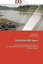 Pollution des eaux: Caracterisation physicochimique et microbiologique des eaux usées de la ville de Kénitra -Maroc- (Omn....