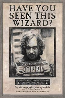 Trends International The Wizarding World: Harry Potter-Sirius Black Wanted Wall Poster, 22.375