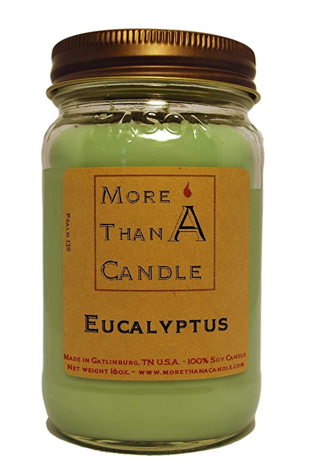 リマーク節約蛾More Than A Candle ELP16M 16 oz Mason Jar Soy Candle, Eucalyptus