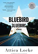 Bluebird, Bluebird (A Highway 59 Novel Book 1)