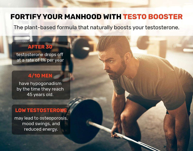 snap testo booster ingredients