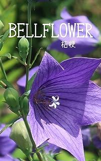 初夏の桔梗の花畑 四季の自然の写真集: 身近にある美しい自然 版権フリー、商用利用可の写真集 (扇デザインスタジオ)