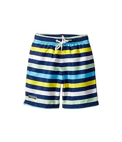Toobydoo Multi Stripe Swim Shorts (Infant/Toddler/Little Kids/Big Kids) (Navy/Blue/Green/White/Yellow) Boy