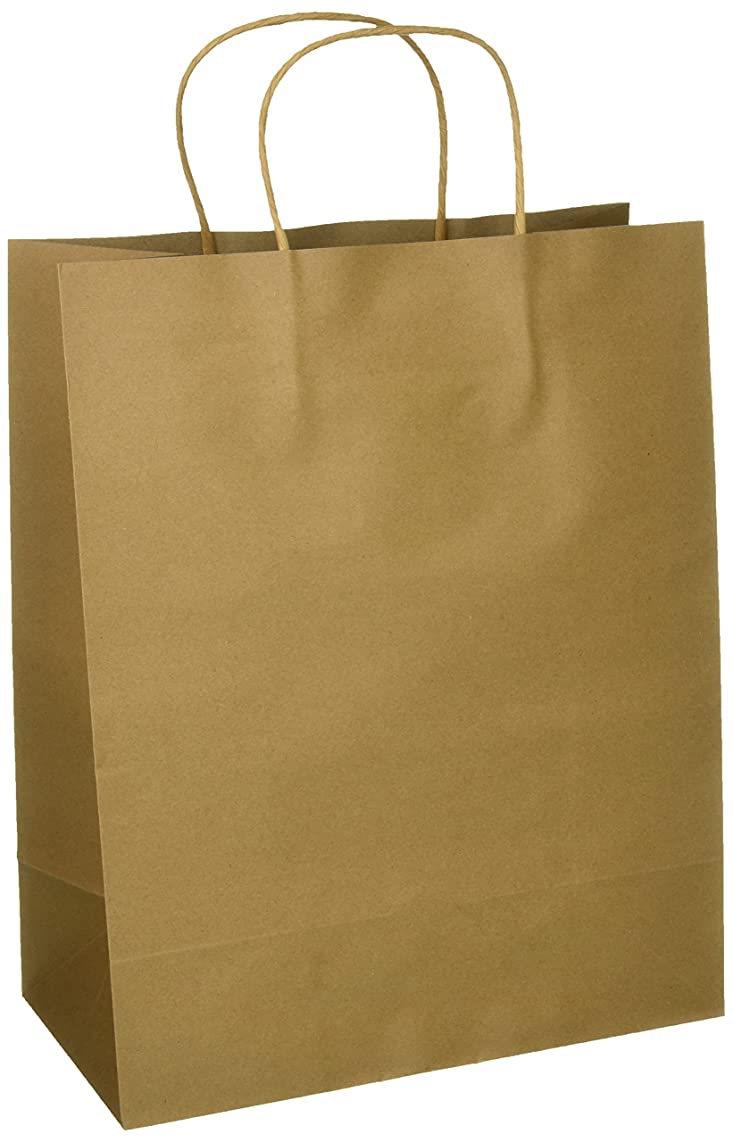 Craft Gift Bags ~ Brown Paper 1 Dozen - 10
