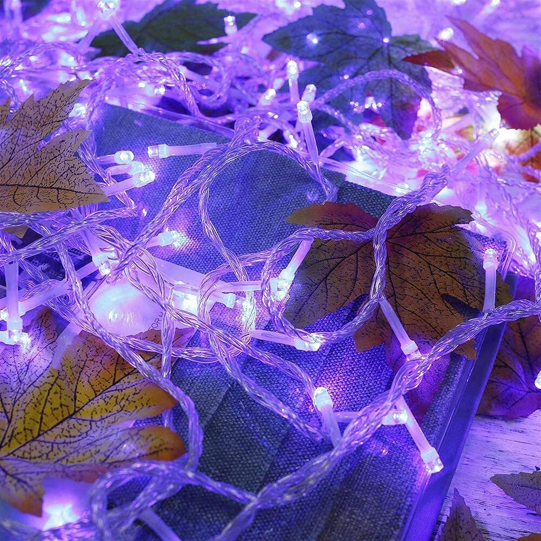 ZSMPY Fairy Lights Led String Lighting 8 Light Sale special price Modes Over item handling ☆