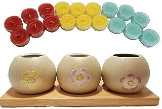 ShoppeShare Springtime Flower Garden Globes Tealight Holders Decoration and Candles Bundle - Retired PartyLite