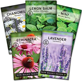 Sow Right Seeds - Herbal Tea Collection - Lemon Balm, Chamomile, Mint, Lavender, Echinacea Herb Seed for Planting; Non-GMO...