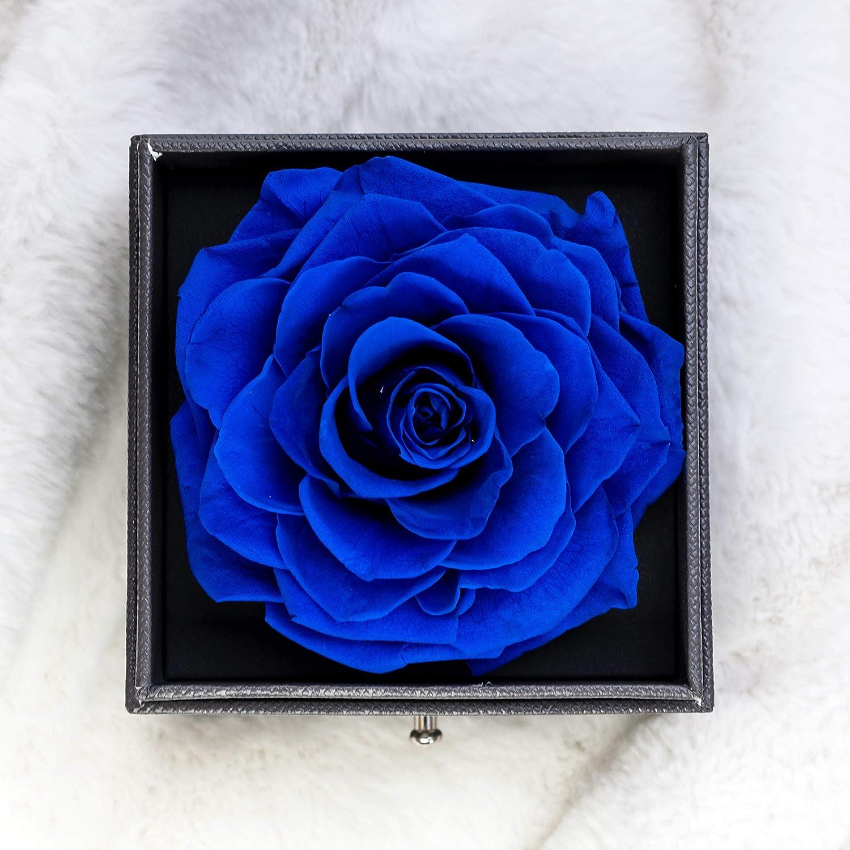 Vera Rosa eterna con Ti Amo Confezione Regalo Collana per San Valentino Festa della Mamma Anniversario Matrimonio Regali romantici per lei Rosa