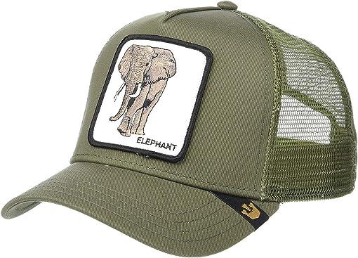 Olive Elephant