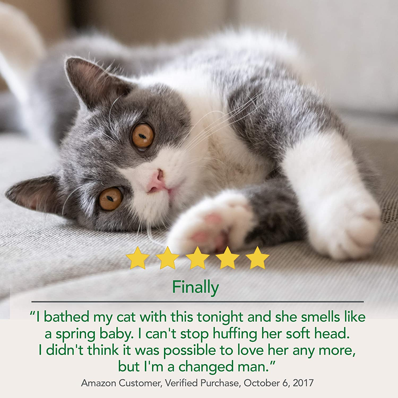 Vet's Best Waterless Cat Bath   No Rinse Waterless Dry Shampoo for Cats   Natural Formula   4 Ounces : Pet Shampoos : Pet Supplies