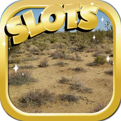 Best Slots To Play : Desert Chen Edition - Crack The Jackpot + Daily High Payout Bonuses + Free Wheel Spins & Bonus Rounds You Can Win Big!