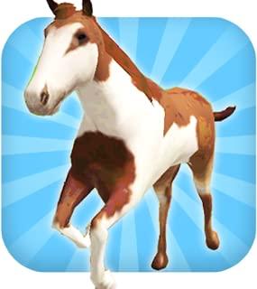 A Horse Ride: Wild Trail Run & Jump Game