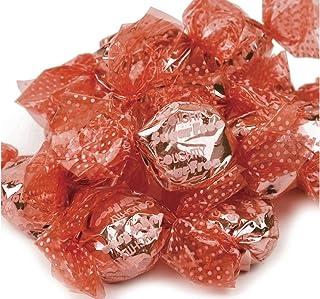 Go Lightly Sugar Free Cinnamon Hard Candy bulk sugar free candy 5 pounds