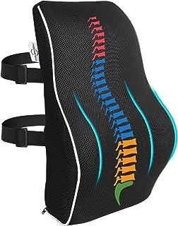 AMERIERGO Oreiller ergonomique de soutien lombaire pour le soulagement des douleurs dorsales et adapté à la maison, au bur...
