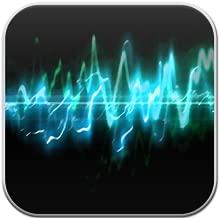 Paranormal Ghost EVP/EMF Radio