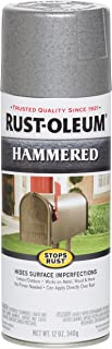 Rust-Oleum 7213830 Spray Paint, Each, Silver