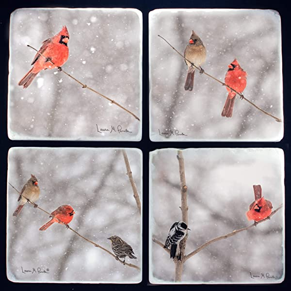 Cardinal Coasters For Drinks Absorbent Stone Set Of 4 Handmade