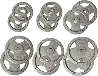 POWRX Discos olímpicos 2,5-20 kg Set - Pesas Ideales para Mancuernas y Barras olímpicas con diámetro 50 mm (Plata)