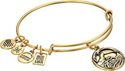 Alex and Ani - Team USA Swimming Bangle