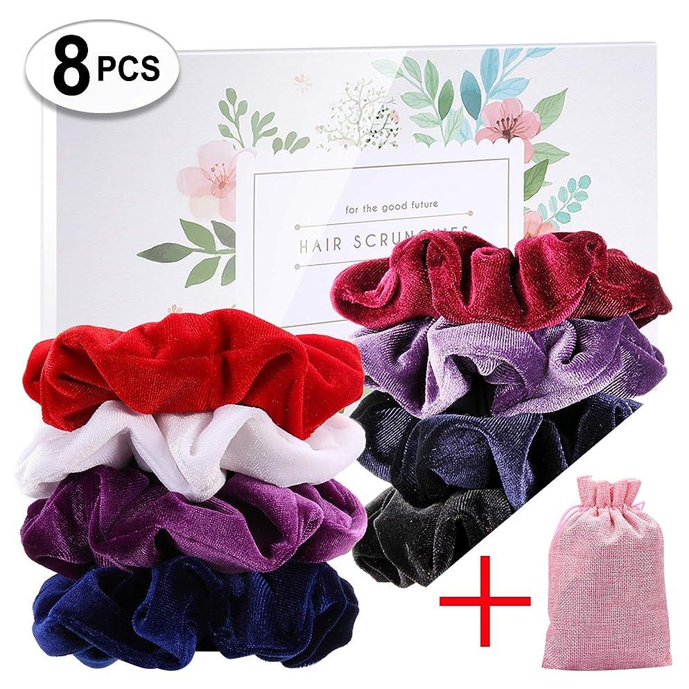 RoterSee 8 Packs Velvet Scrunchies Hair Scrunchies Elastics Scrunchy Bobbles Soft Hair Bands Hair Ties, 8 Colors (8PCS)