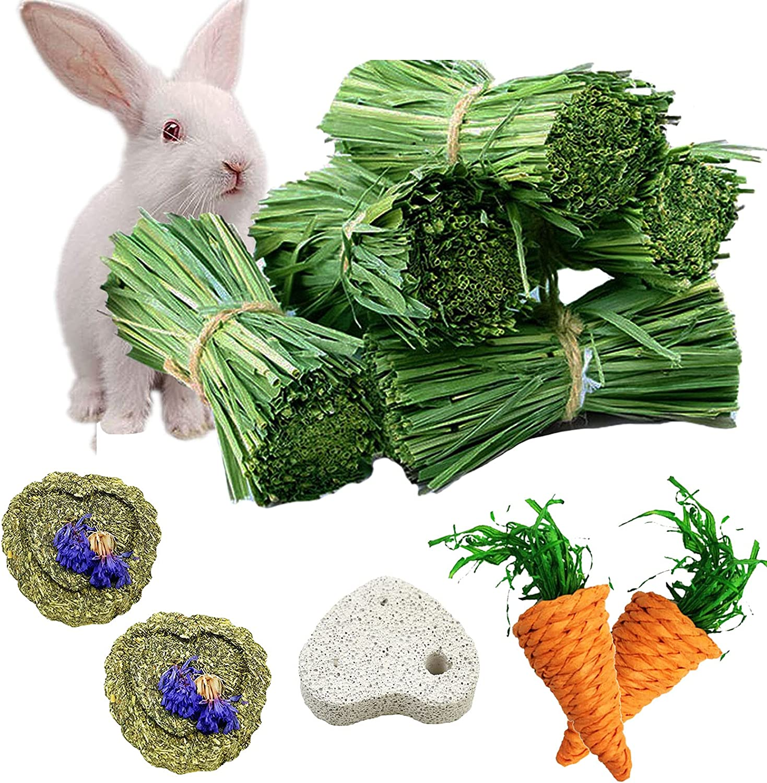 Ranking TOP4 kathson lowest price Rabbit Natural Chew Treats Animal Natura Toys Small