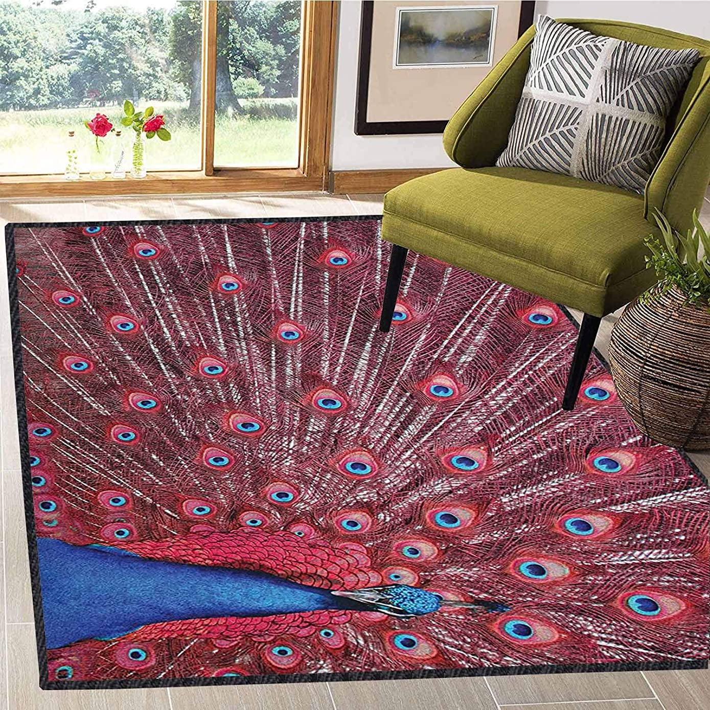 Throw Carpet Rugs Peacock Water Absorption and Quick Drying A Beautiful Male Displays His Plumage Majestic Surreal Wildlife Theme Artwork Burgundy Blue 4X6 Ft