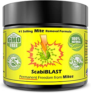 Mite Cream Lotion Natural Blend for Humans of All Ages FAST PERMANENT Removal Killer of ALL Mites Better Than Shampoo Permanently Get Rid of Mites Most Powerful Blend BIG 2oz Jar
