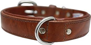 "Genuine leather dog collar. 18"" x 3/4"", Brown. Western padded collar. 100% Genuine Argentinean cowhide. Angel Elite (DALLA..."