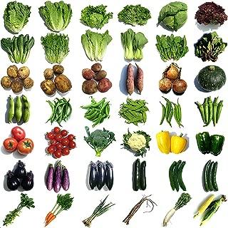 野菜セット 9品目詰め合わせ 山梨県産 無農薬 無化学肥料栽培