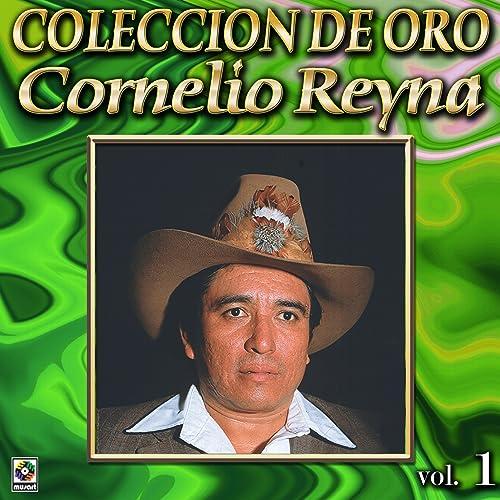 Vestida Y Alborotada By Cornelio Reyna On Amazon Music