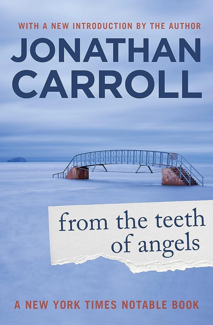 コスト貧困堤防From the Teeth of Angels (English Edition)