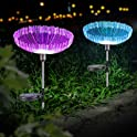2-Pack Neporal Multi-Colored Fiber Optic Solar Stake Lights