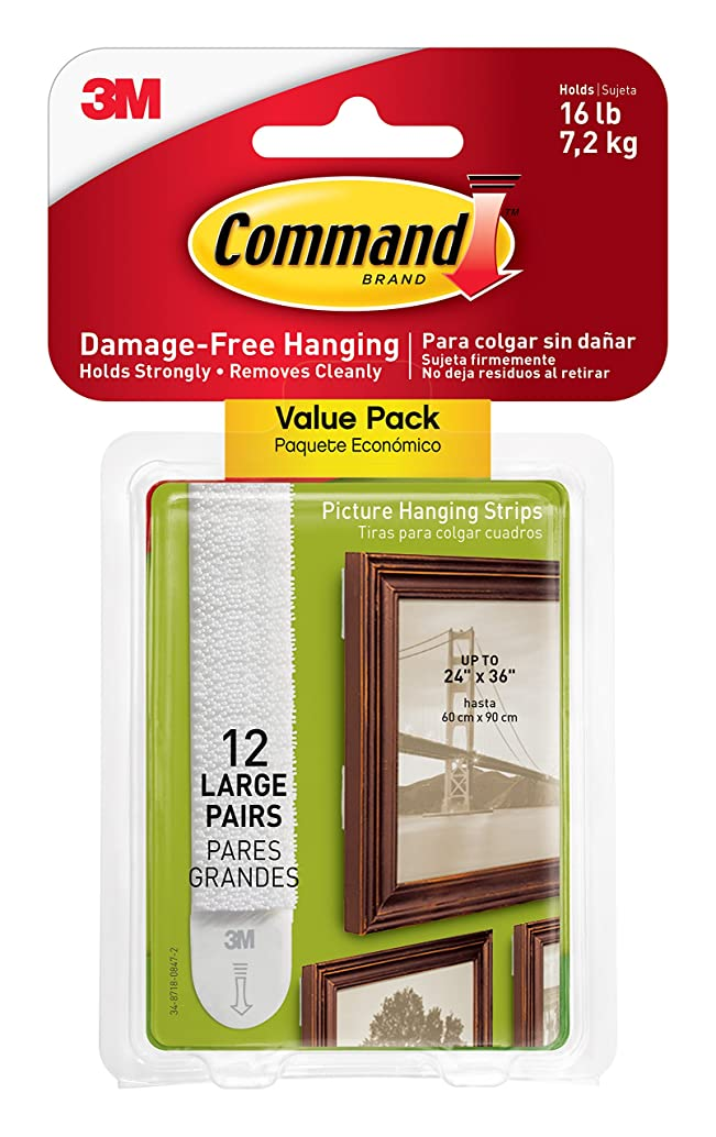 Command by 3M Picture Hanging Strips, White, Decorate Damage Free, Easy On, Easy Off, (17206-12ES)