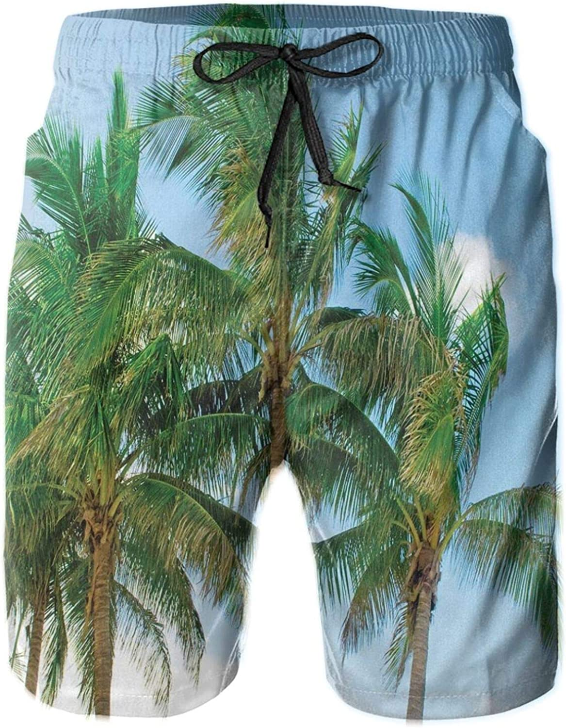 Palm Tree Tops in Sunny Sky Relaxing Exotic Idyllic Nature Serene Scenery Image Mens Swim Shorts Casual Workout Short Pants Drawstring Beach Shorts,XXL