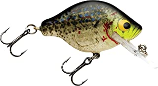 Bagley Baits Small Fry 1 Fishing Bait