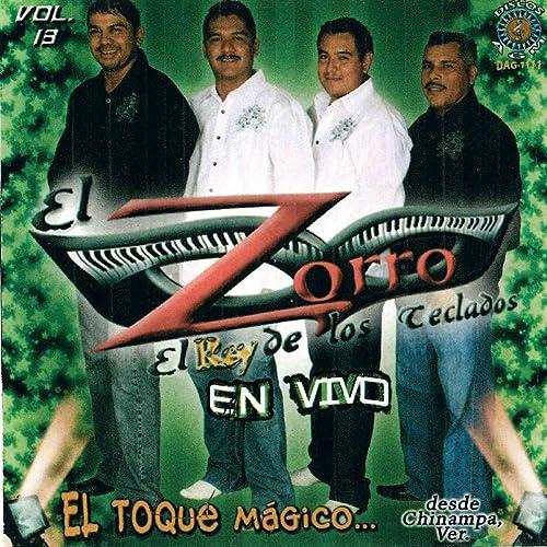 historia de un amor de El Zorro de los Teclados en Amazon ...