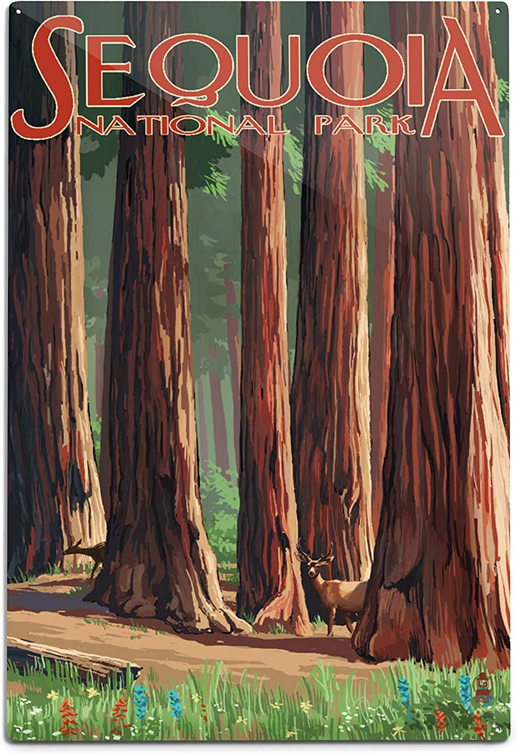 Lantern Cheap sale Press Sequoia National Park Grove in Spring Cheap SALE Start 9564 Forest