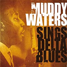 muddy waters and little walter